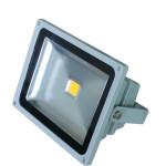 Proiector LED 50W 220V C