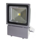 Proiector LED 100W 220V Clasic